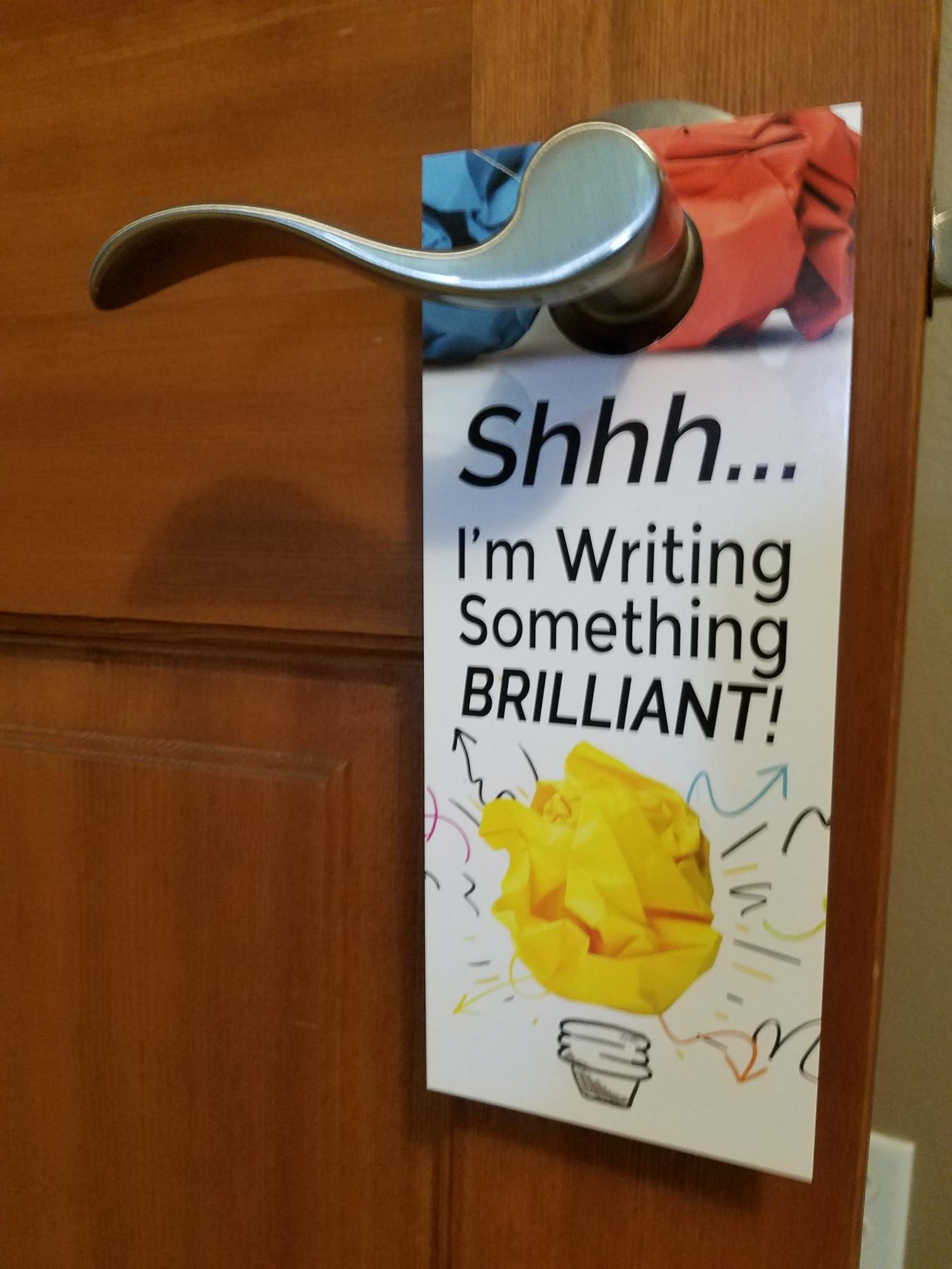 door sign I'm writing something brilliant